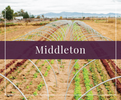 Middleton Real Estate and Homes